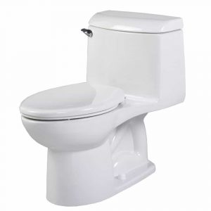 American Standard Champion 4 Toilet Review October 2018