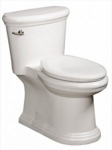 Danze DC011323WH Orrington toilet review