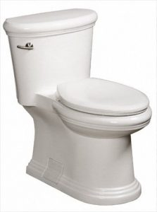 Flushing toilet Danze DC011323WH Orrington